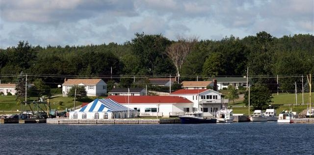 Dobson Yacht Club from the Harbour